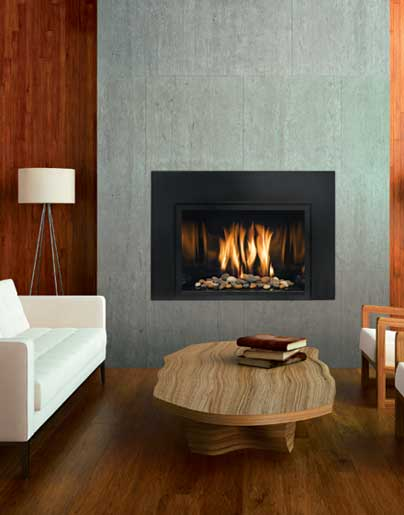 Spare the air convert your wood burning fireplace - The types and uses of contemporary fireplace inserts ...